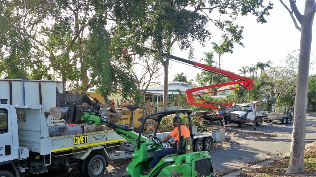 Tree Removal Services- Make Your Job Easier